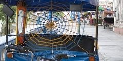 Mototaxi  City tours